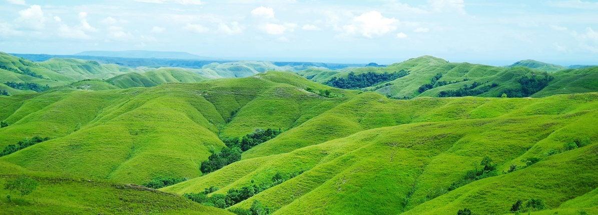 Lima Pilihan Wisata Sabana di Indonesia