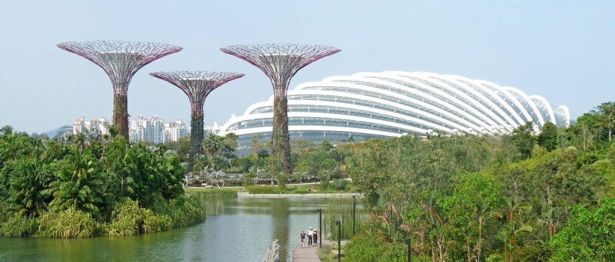 Masuk ke Singapura, Wisatawan dari Selandia Baru dan Brunei Tidak Lagi Dikarantina